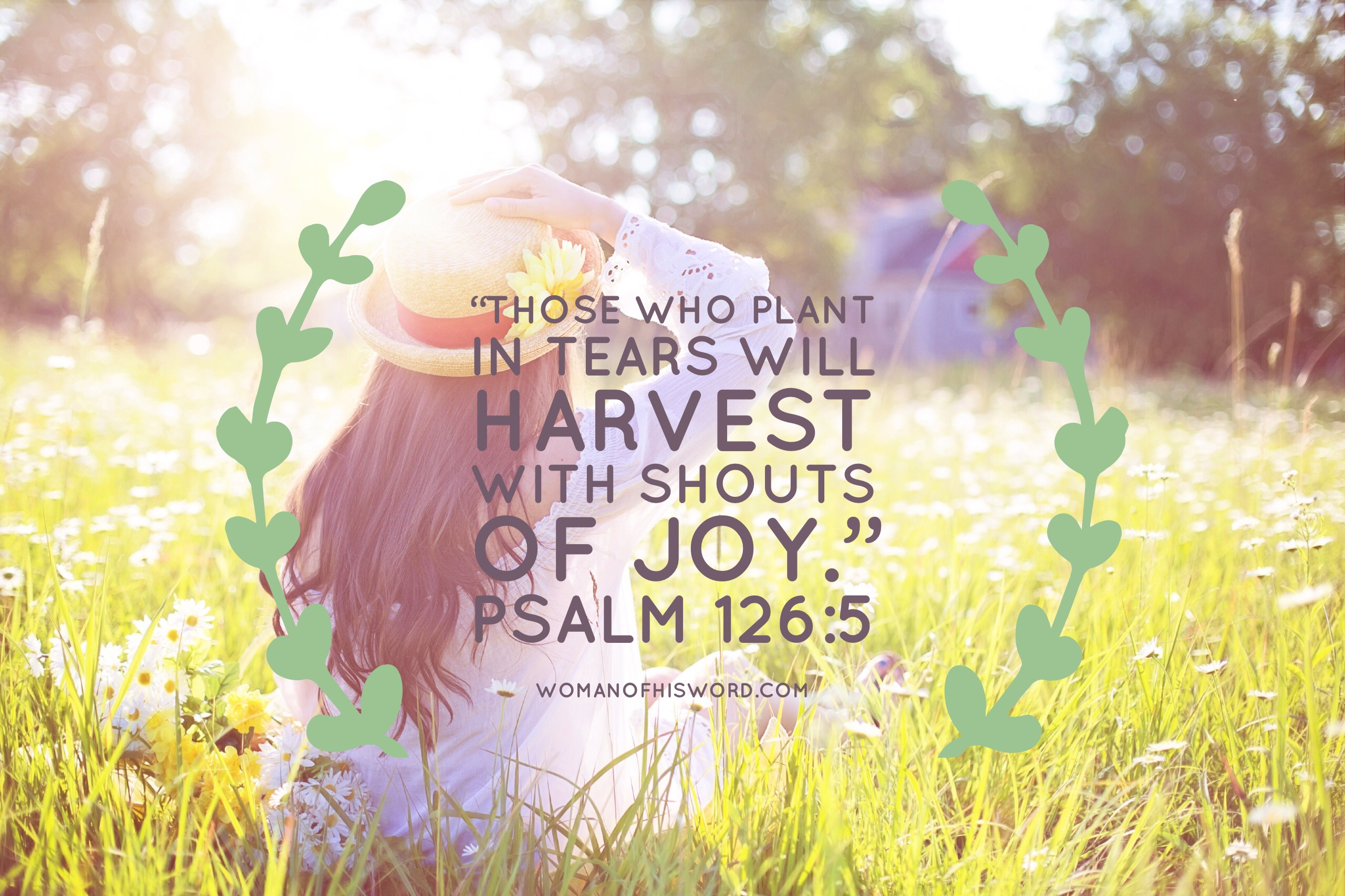 Meditation Monday: Harvest Of Joy